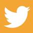 divkidmusic-twitter-65
